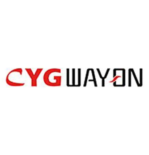 上海长园维安电子线路保护有限公司